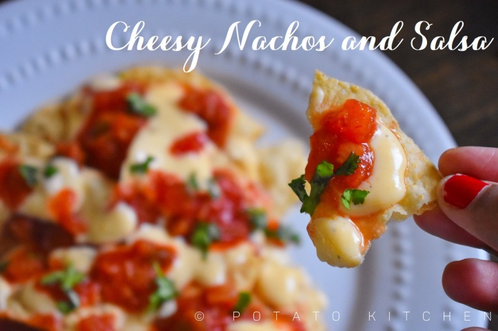 CHEESY NACHOS AND SALSA (31)