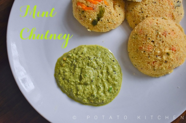MINT CHUTNEY WITH COCONUT (38)